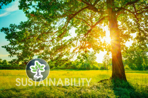 WGES: Sustainability and Preservation for Natural Resources